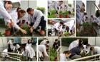 玛格丽特的春天——三六三医院开展植树节活动